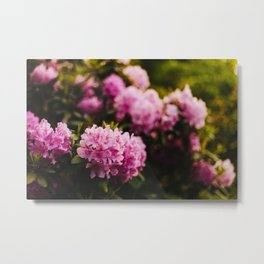 Lush Three Metal Print