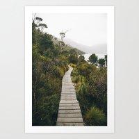 Cradle Mountain path Art Print