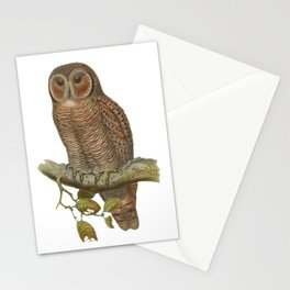 Lonely Owl Realistic Painting Stationery Cards