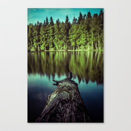 Tweezers Canvas Print