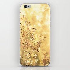 Blazing Meadow iPhone & iPod Skin