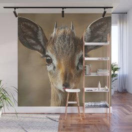 Antelope Lips Wall Mural