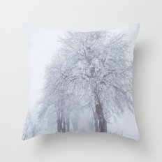 Heading north Throw Pillow