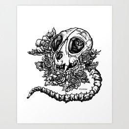 skeleton cat Art Print