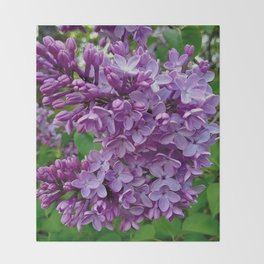 Lilac Blooms Throw Blanket
