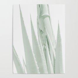 """Agave Abstract 6"" Botanical Art by Murray Bolesta Poster"