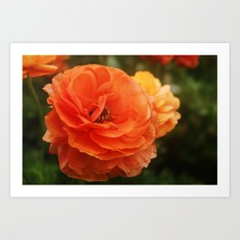 Bright Orange Art Print