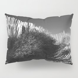 Fencing On The Beach Pillow Sham