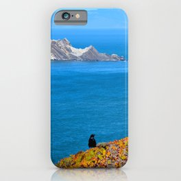raven at devil's slide iPhone Case