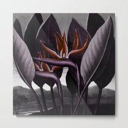 Birds of Paradise : Temple of Flora Dark Metal Print