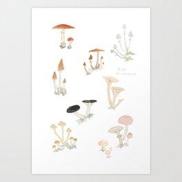 Sketchbook Mushrooms Art Print