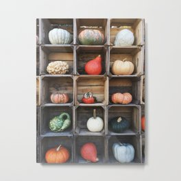 Grid of Gourds Metal Print
