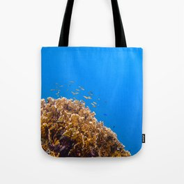 School Tote Bag