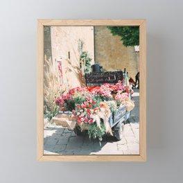 Sunshine and Flowers | Botanical Italy fine art travel photography | Monticchiello Tuscany Framed Mini Art Print