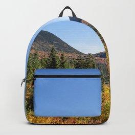 Kancamagus foliage Backpack