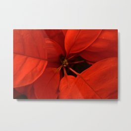 Poinsetta Center Metal Print