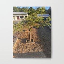 Playground Tree Metal Print