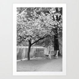 Spring Park Bench Art Print