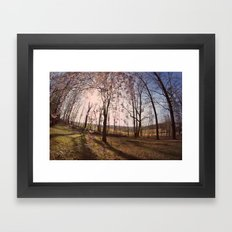 the Flowered Tree Framed Art Print