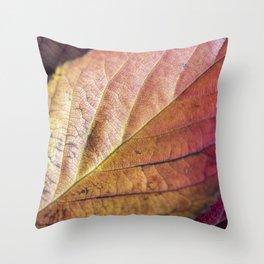 Autumn Colours II Throw Pillow