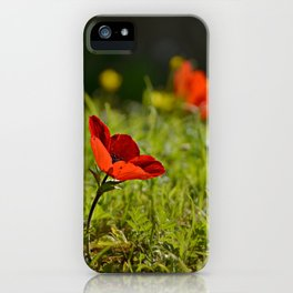 Solitary Anemone iPhone Case