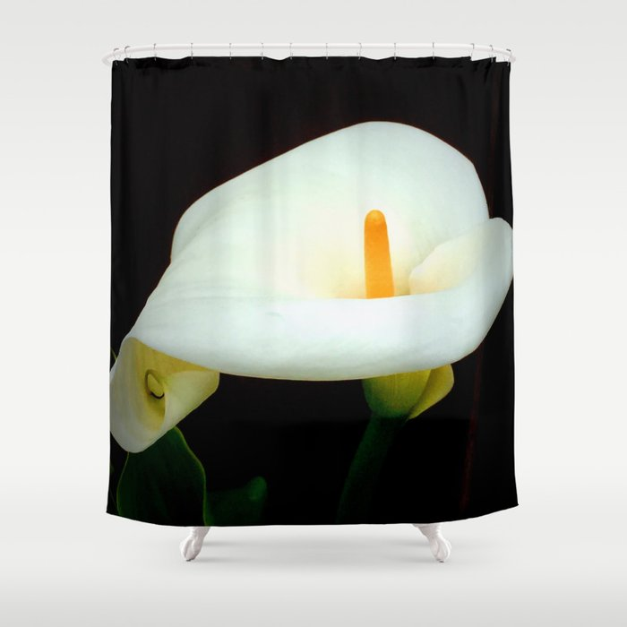 Calla Lily Shower Curtain By Lyndaanneart