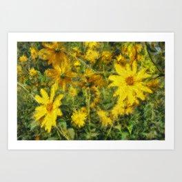 Silphium Perfoliatum Art Print