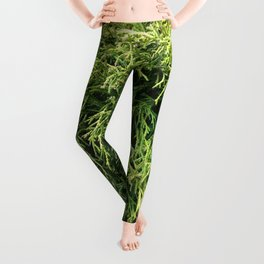 Combed Greens Leggings