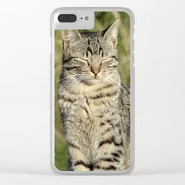 The Contented Cat Clear iPhone Case