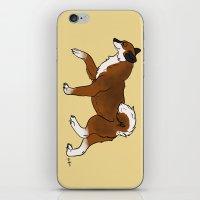 shiba iPhone & iPod Skins featuring Shiba Inu by RoseArtStudios