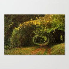 Leaf Your Troubles Behind Canvas Print