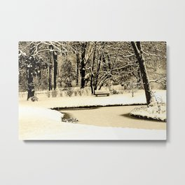 Winter scenery in a park Metal Print
