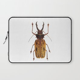 Macrodontia Cervicornis Sabertooth Beetle Laptop Sleeve