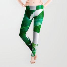 Tropical Display Leggings