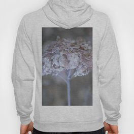 Frost Petals Of Hydrangea #decor buyart #society6 Hoody