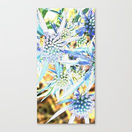 Flowers rays of sunshine Canvas Print