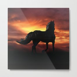 Horse kissed by the wind at sunset Metal Print