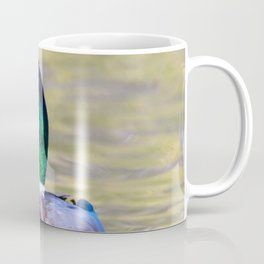 Male Mallard Duck Coffee Mug