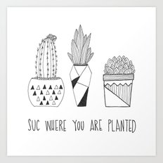 suc where you are planted Art Print