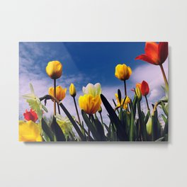 Relax With The Tulips Metal Print