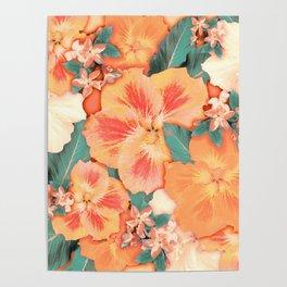 Aloha Orange Sherbet Poster