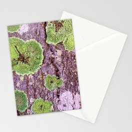 Tree Bark Pattern with Lichen #7 Stationery Cards