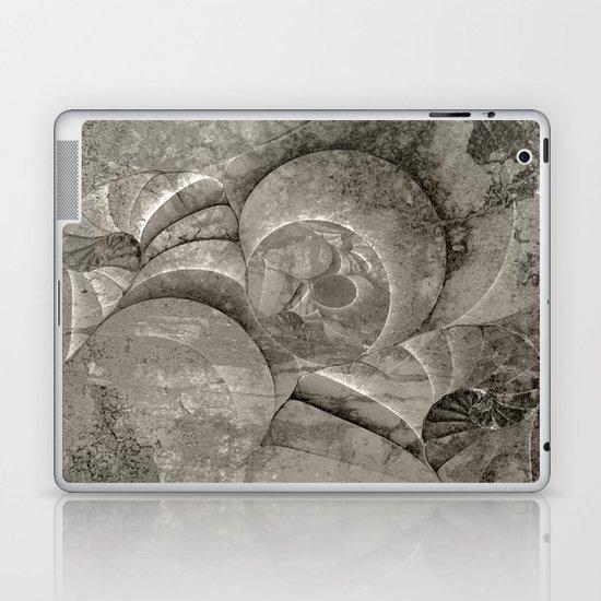 Fossilized Shells - Black & White Laptop & iPad Skin