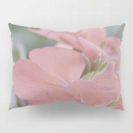 Zonal Pelargonium Neon Pink Pillow Sham
