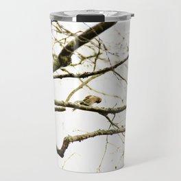 Redpoll birds in aspen tree Travel Mug