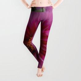 Pink Dahlia Leggings