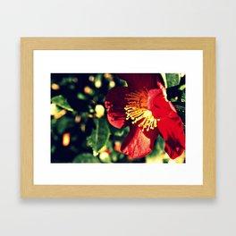 Hansville, WA Framed Art Print