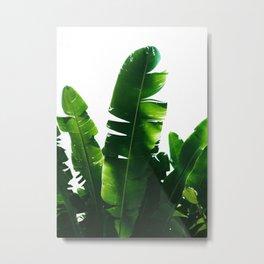 Leaves Green Metal Print