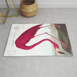 Flamingo Vintage Scientific Bird Illustration Rug