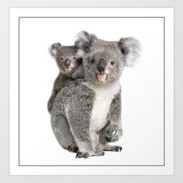 Koala bear and her baby Art Print